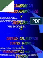 3-5-neoplasias-5-defensa-y-tnm-2004