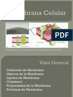 003membrana Celular