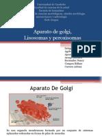 Seminario 1 Aparato de Golgi, Lisosomas y Peroxisomas (1)