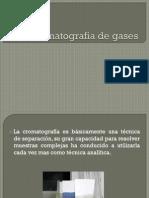 Exposicion Cromatografia de Gases
