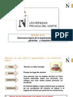 3_Estructura Lógica de La Argumentación Bases, Garantías