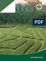 ATAGUA Caña de Azucar Revista PDF
