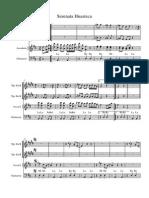 Serenata Huasteca (1)