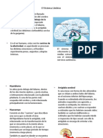 El Sistema Límbico.pdf