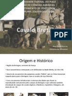 Cavalo Bretão
