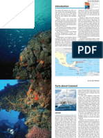 diving-cozumel-introduction.pdf