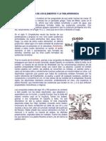 Historia de Los Elementos y La Tablaperiodica