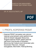 Penguatan Kinerja Dan Manajemen Koperasi Peternak Sapi Perah Pesar
