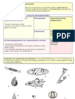 microbiologia2009