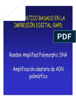 6. RAPD'S