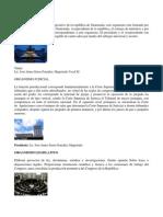 ORGANISMO EJECUTIVO.docx