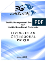 3G Americas Traffic Managment Techniques for Mobile Broadband Networks