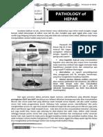 Hepatology of Hepar
