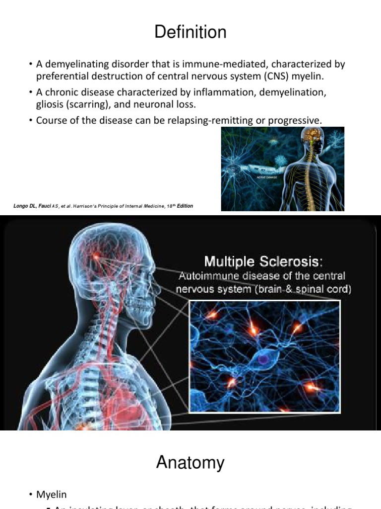 MS Definition and Anatomy | Multiple Sclerosis | Myelin
