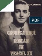 IGDuka Cronica unui roman