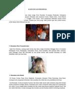 Kasus Pica Di Indonesia