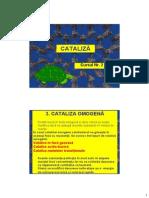Cataliza - Curs 2