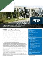 FactSheet DSFR v2013 En