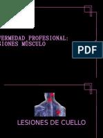 JimSandra osteomusculares