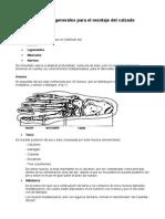 Conocimientos Generales Para El Montaje Del Calzado
