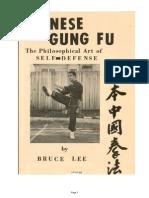 Chinese Kung Fu