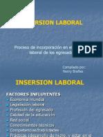 insersion laboral 2014