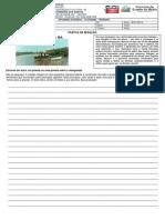 Produção de texto Avaliativo - Manguezal..docx
