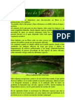 Anfibios en Illora