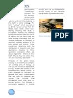Bio Ecology Folio Complete