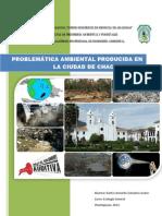 228925751 Contaminacion Ambienta en Chachapoyas Amazonas Peru