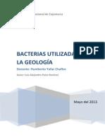 Bacterias Utilizadas en La Geología