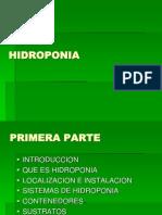HIDROPONIA 1