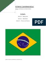 Brasilien - Schwellenland oder Entwicklungsland
