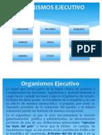 Presentación Del Trabajo de t. Del e.