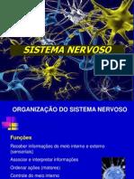 4. Sistema Nervoso II