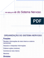 6 - Anatomia Do Sistema Nervoso