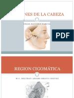 Regiones anatomicas