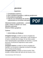 teórico estomatología