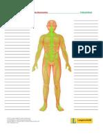 Treffpunktberuf Pflege-nerven Wortschatzliste
