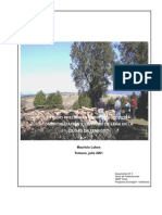 Estudio Preliminar Sobre Produccion Comercializacion y Co