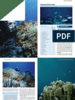diving-conzumel-cozumel-dive-sites_v1_m56577569830500948.pdf