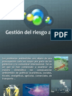 Gestion de Riesgo Diapositiva