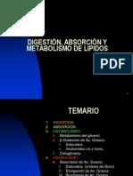 Metabolismo de Lipidos