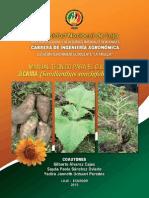 Manual Técnico de Jícama