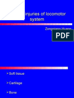 Chronical injuries of