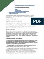 Clasificación Del Presupuesto - Doc Apoyo