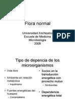 Flora_normal
