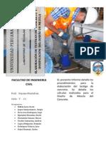 Informe Final Pelao