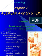 ALIMENTARY SYSTEM