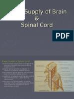 Blood Supply of Brain &